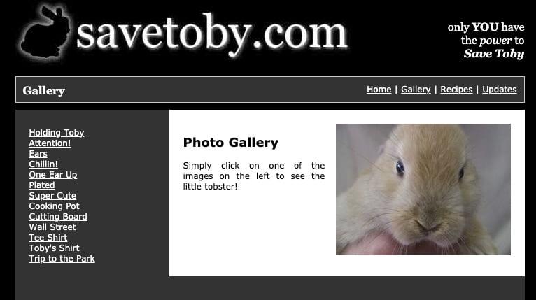 Savetoby com
